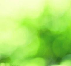3D-green-world-image_edited.jpg