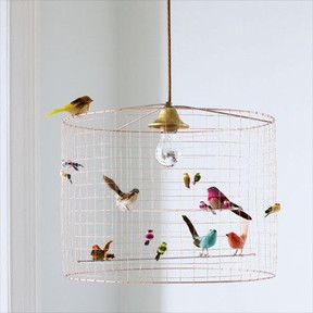 The Bird Cage On The Opposite Side Of The Swing Or In Any Other Place Of Your Room Beside The Window Where You Re Gonna Hang The Curtains Preferably