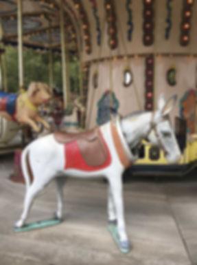 l'âne d'Arles