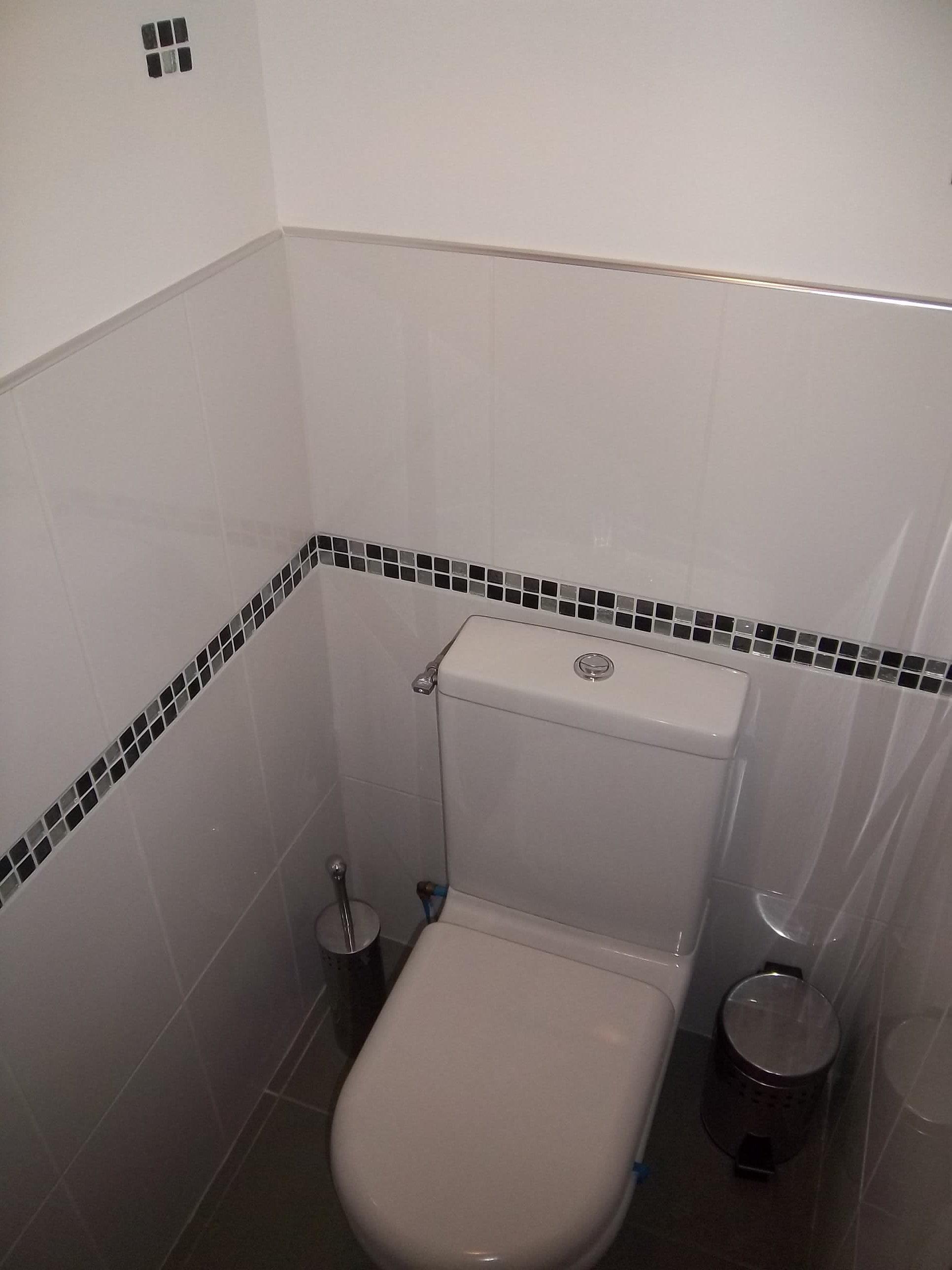 gregorycamus   faience WC