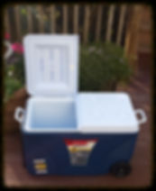 Harmony Party Rental - Wheeled Plastic Beverage cooler