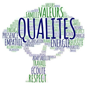 Qualités_valeurs.png