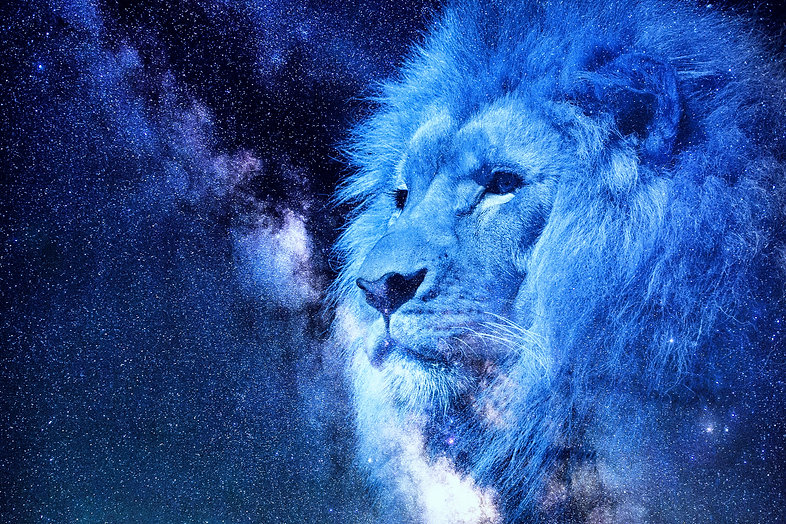Celestial blue Lion_edited_edited.jpg