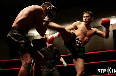 steve fight.jpg