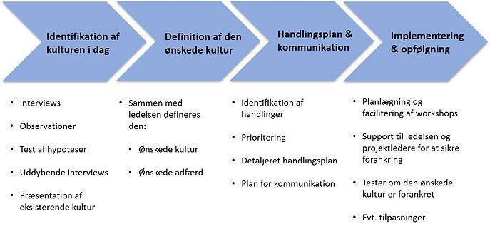 Kulturudviklingsmodel.jpg