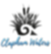 Clapham-Waters-logo.png