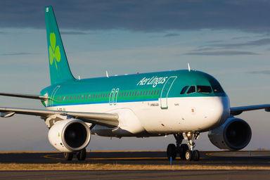 Aer Lingus A320.jpg