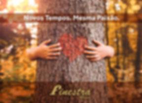 Finestra_Catálogo_2020-01.jpg