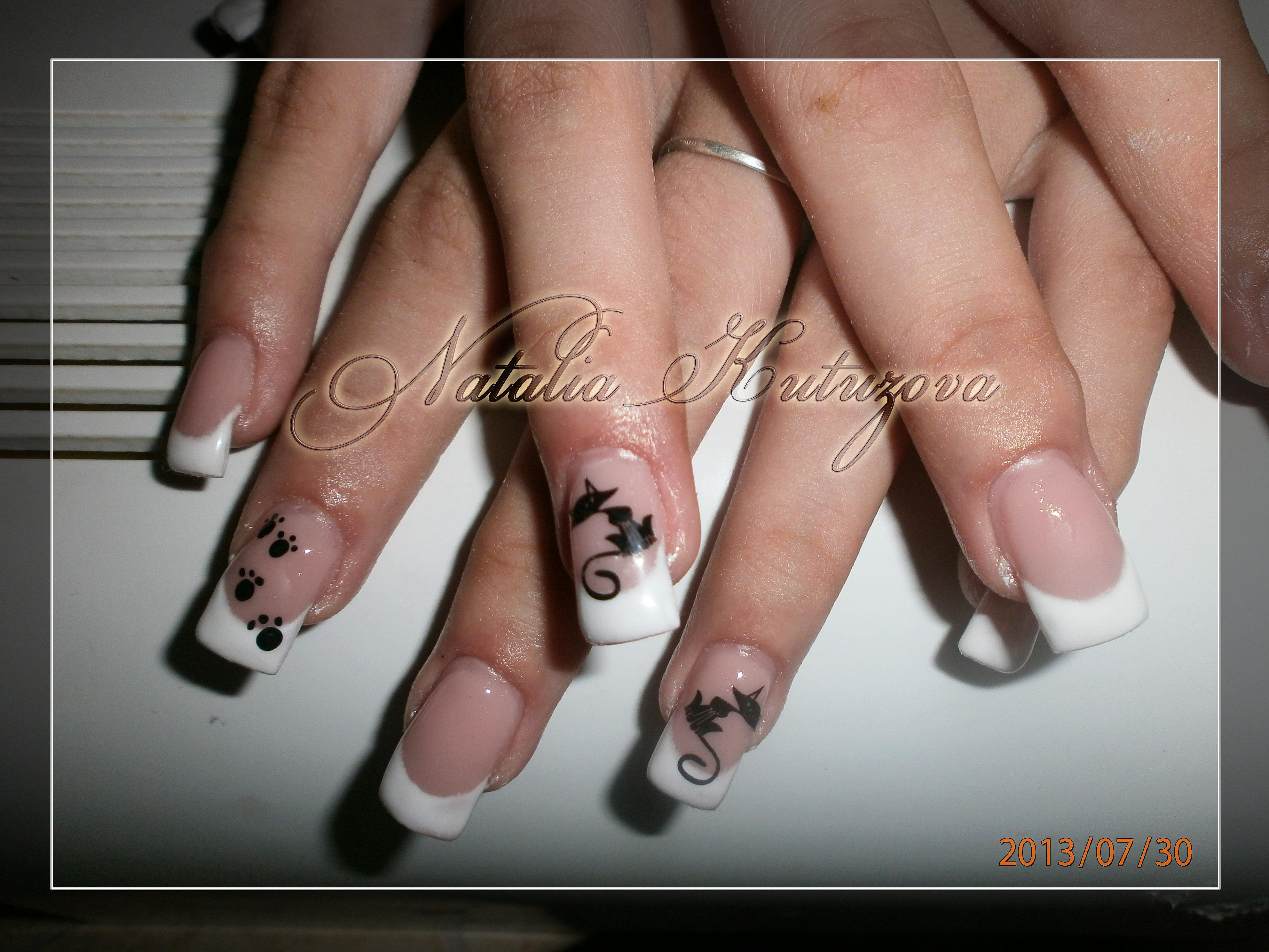 Ногти нарощенные фото кошек