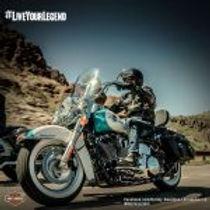 Harley--150x150.jpg