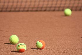 tennis-3815383_1280.jpg