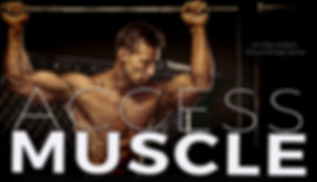 ACCESS MUSCLE banner Alex Ardenti 3.jpg