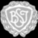 Brøndby_Strand_IK_edited.png