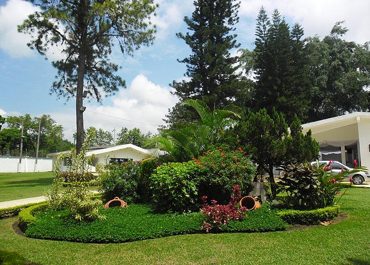 Casa nro 1 for Arboles bonitos para jardin