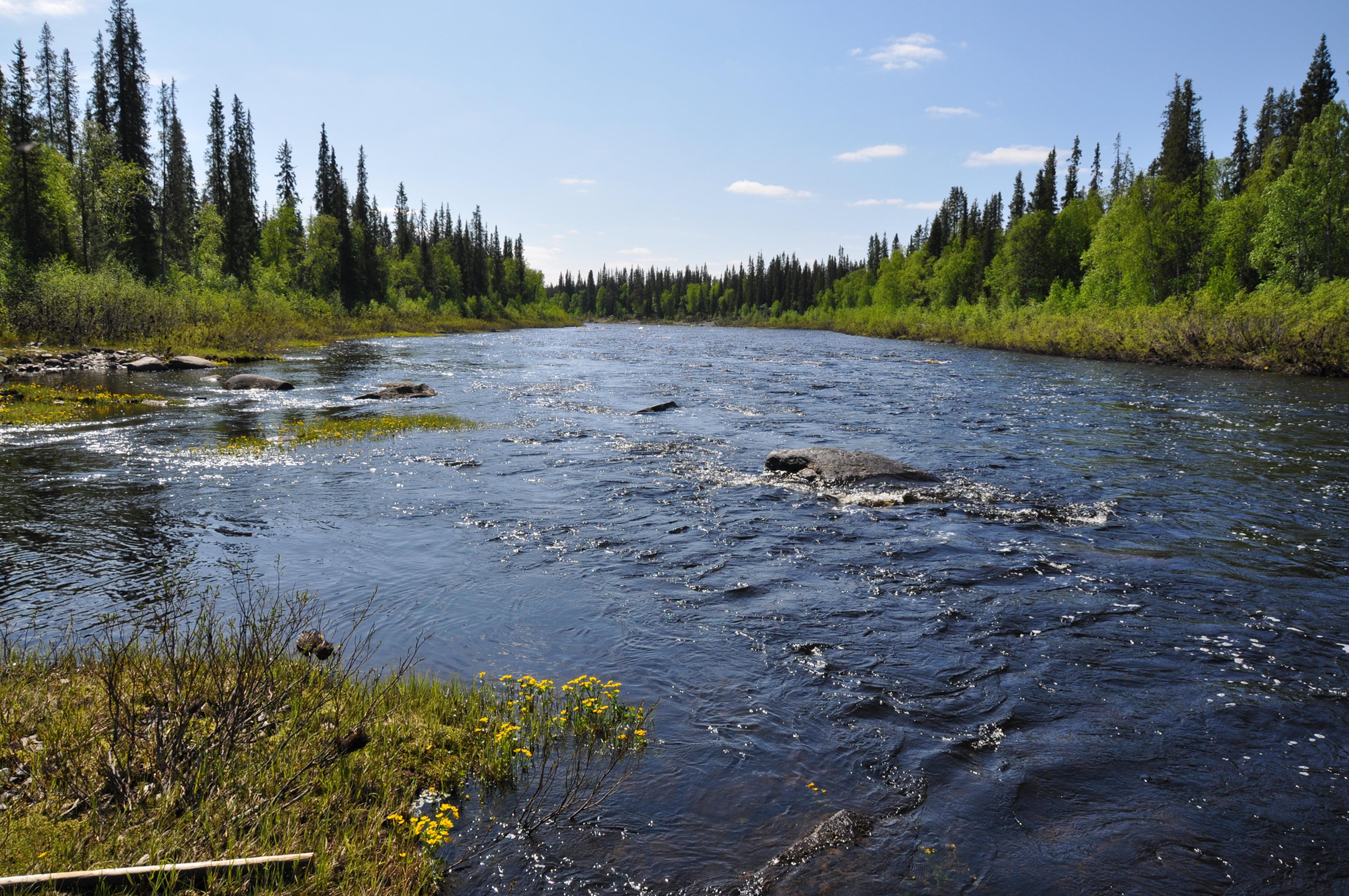 кица река рыбалка