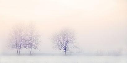 winter-landscape-2571788.jpg