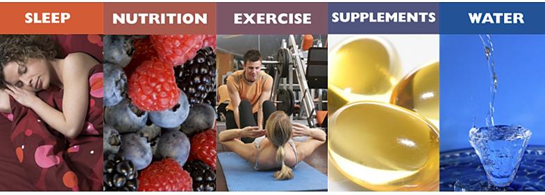 wellness components
