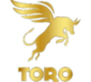 Toro%2520Gold%2520copy_edited_edited.png