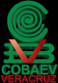 Resultado de imagen para cobaev PNG