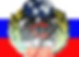 Академия Военных Наук