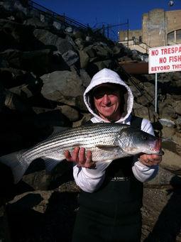 Susquehanna river fishing club for Susquehanna river fishing club