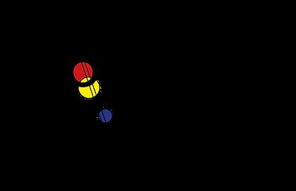 2020_11_Bollmann_Logo_GMBH.png