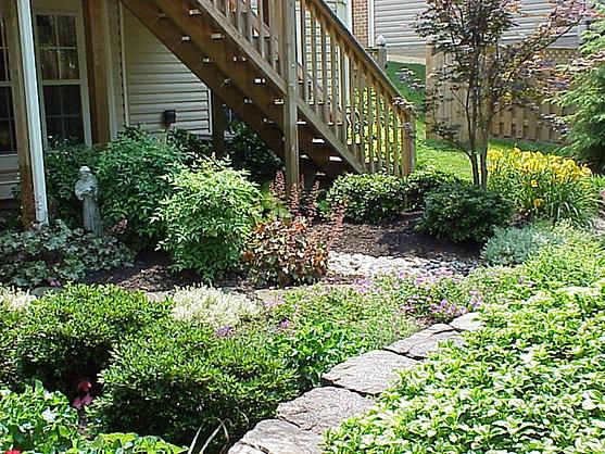 Once a lawn...now a perennial garden