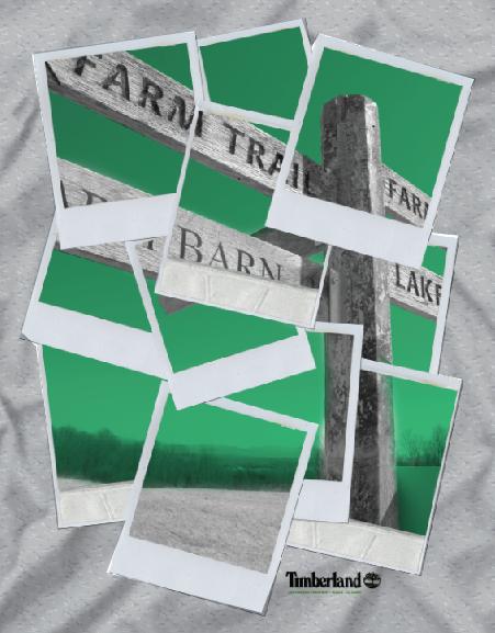 Timberland Polaroid Tee