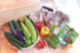 夏野菜きのこ.jpg