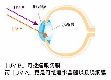 chart2.jpg