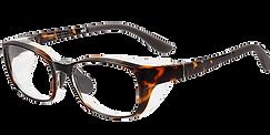 list_airvisor_glasses.png