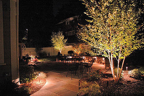 lighting with above ground area lights and wall sconces trees