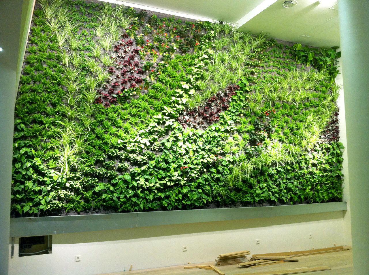 Jardines verticales y techos verdes dise o y construcci n for Jardines verticales quito
