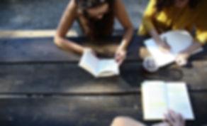 Udendørs Study Group