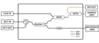 Web_Modules_BasicConfig_OCT-fluoWvoa.png