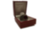 ring12_clipped_rev_1.png