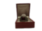 ring22_clipped_rev_1 (1).png