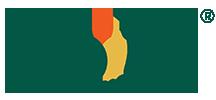 Vrutti-logo.png