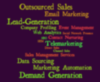 Lead Generation - Data Sourcing, Email Marketing, Telemarketing, Outsourced Sales