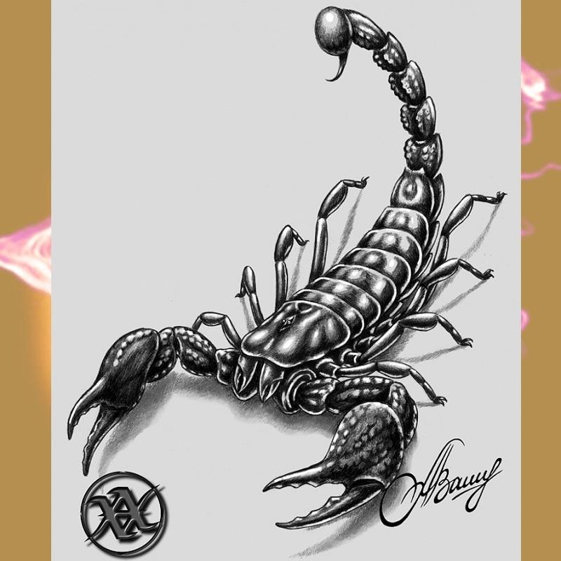 Фото эскиз тату скорпион