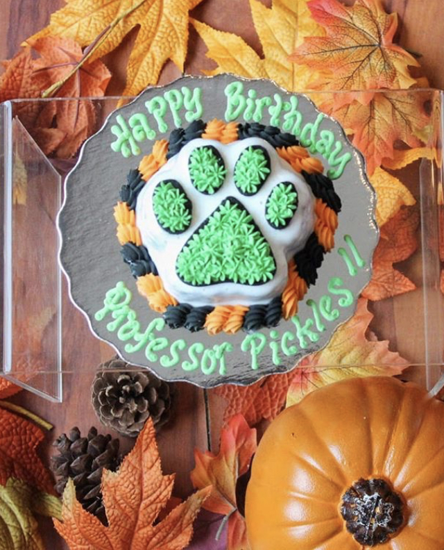 Birthday And All Other Occasion Cakes For Dogs By Pawsalicious Bakery