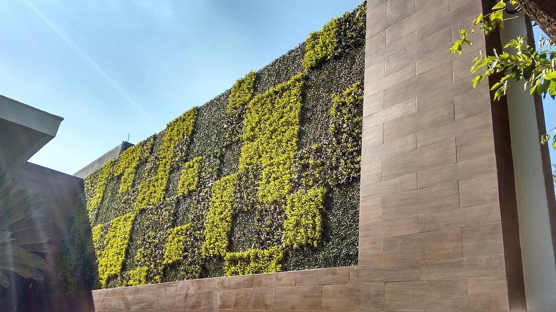 Muros verdes artificiales follaje sintetico follaje for Muros verdes definicion