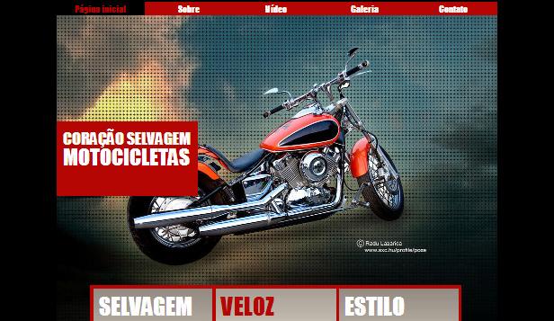 Motos Selvagens