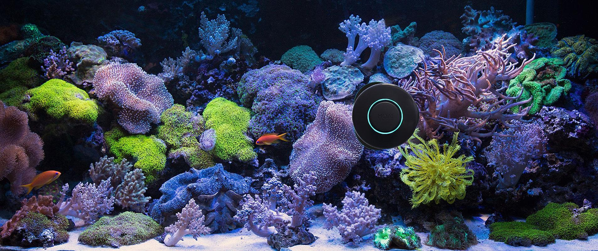 Fun Fish Tank Decorations Moai Smart Robot For Your Aquarium