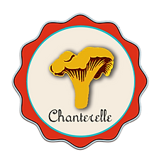 Chanterelle To Go food cart and catering  offers local and sustainable catering throughout western Massachussets.