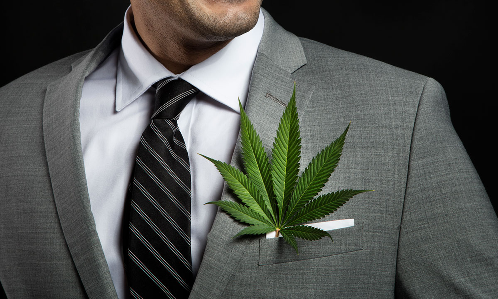 Cannabis Business Consulting
