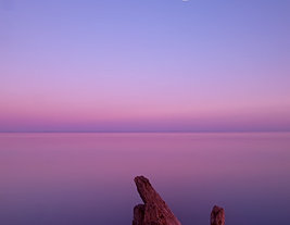 Purple Moonrise