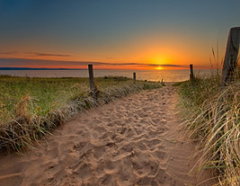Path to Sunrise