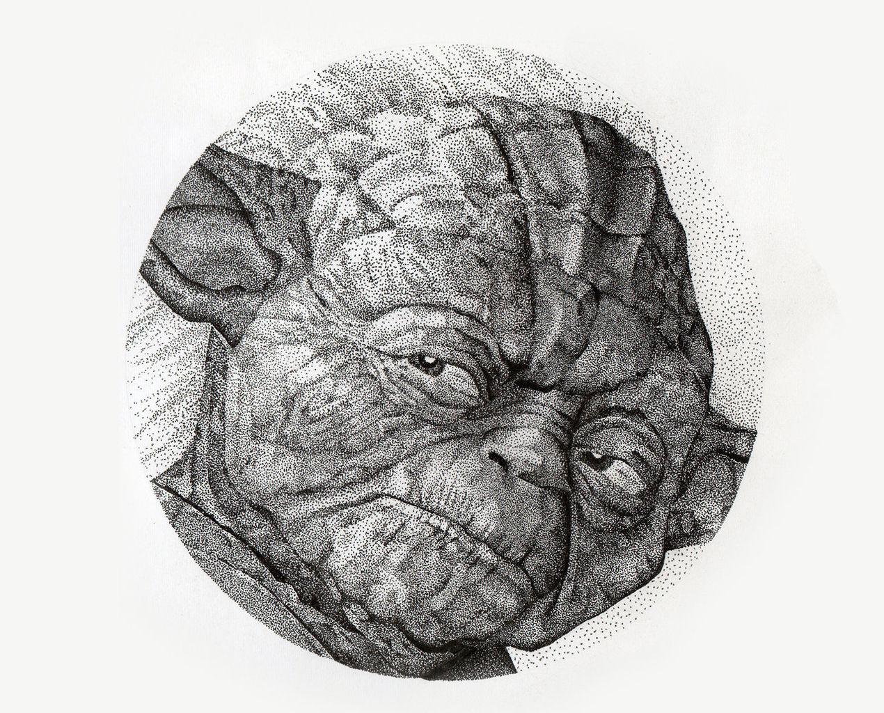 Yoda - Pontilhismo