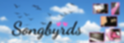 Songbyrds-2.png